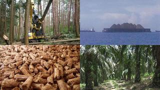 木質バイオマス燃料