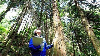 林業スクール