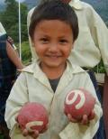 日本ゲートボール連合さんの画像