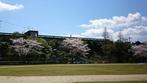 錦江町立池田小学校さんの画像