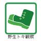 160517個別アイコン(野生トキ観察)-01.png