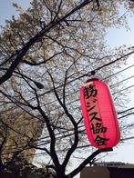 日本筋ジストロフィー協会さんの画像