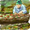 木の子さんの画像