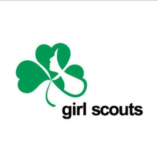 2016-11-05girlscoutsmie3.jpg