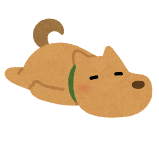 pet_darui_dog.png