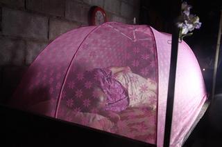 和尚の蚊帳付き寝台.JPG