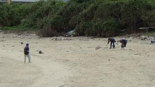 s1006 海岸の様子を見に来た市民が清掃をしていました.jpg