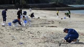 s17 朝仁海岸奄美市市役所の職員が50人以上で清掃作業.jpg